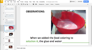 observation food coloring